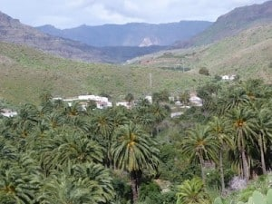 Fataga excursion gran canaria