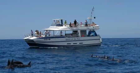 Newport Catamaran Tours