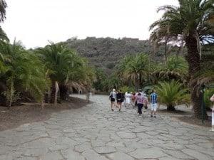 excursion jardin canario