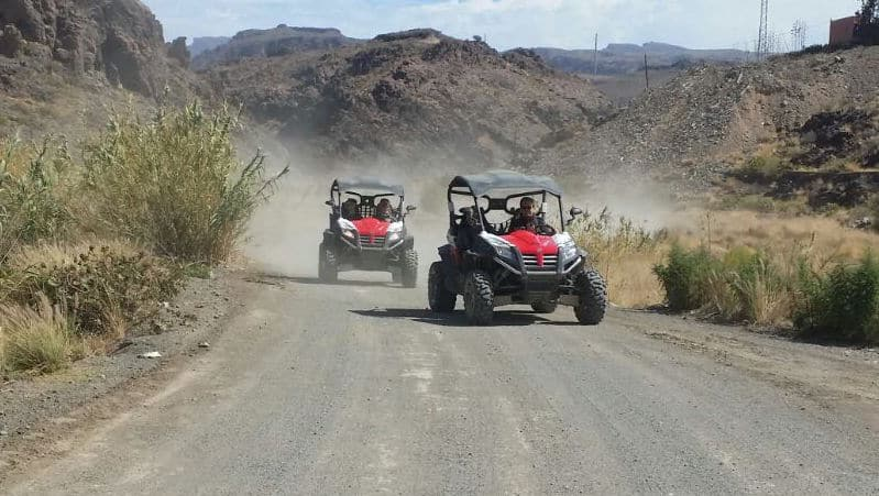 Buggy safari