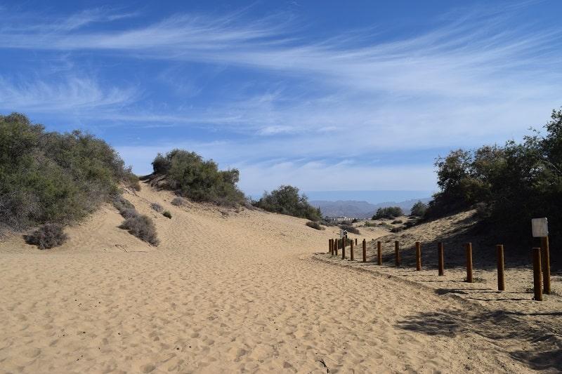 Paisaje dunar de Gran Canaria
