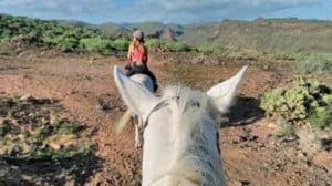paisaje de gran canaria desde caballo