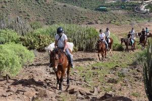 maspalomas gran canaria horse riding