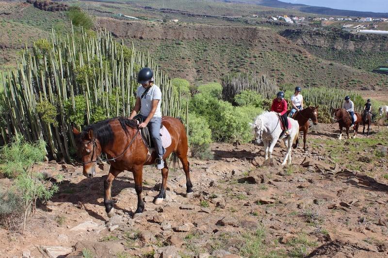 paseos a caballo maspalomas