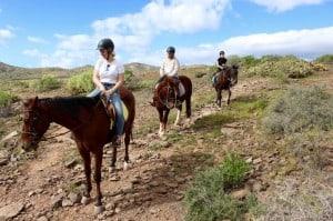 horse riding gran canaria las palmas