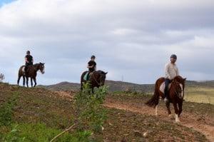 vuelta con los caballos