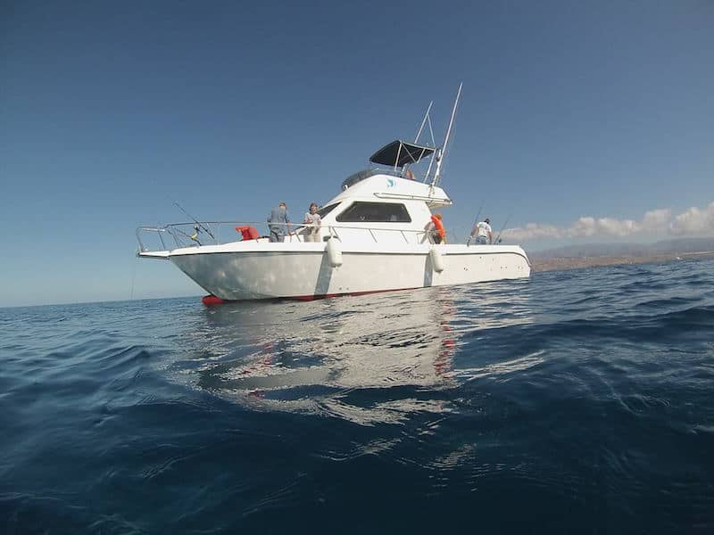 tuna fishing in gran canaria
