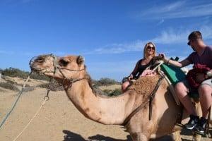 montar a camello en las dunas de Maspalomas