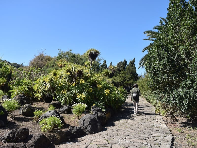 tour to las palmas and the botanical garden