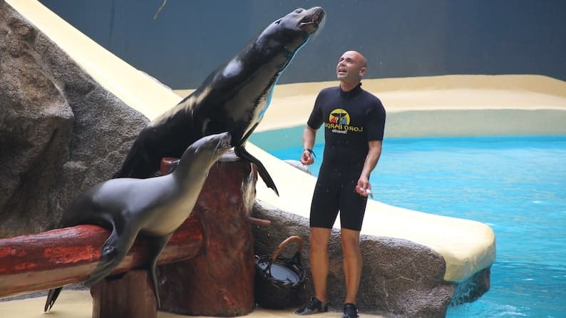 Loro Parque Tours from Las Palmas